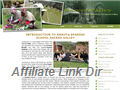 Website preview thumbnail for : Amauta Spanish School