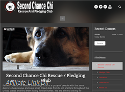 Website preview thumbnail for : Second Chance Chi
